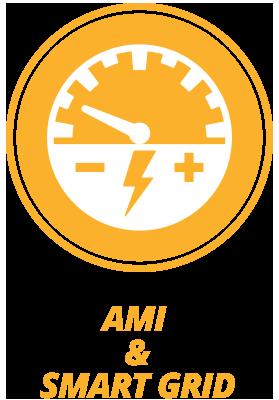 AMI & Smart Grid